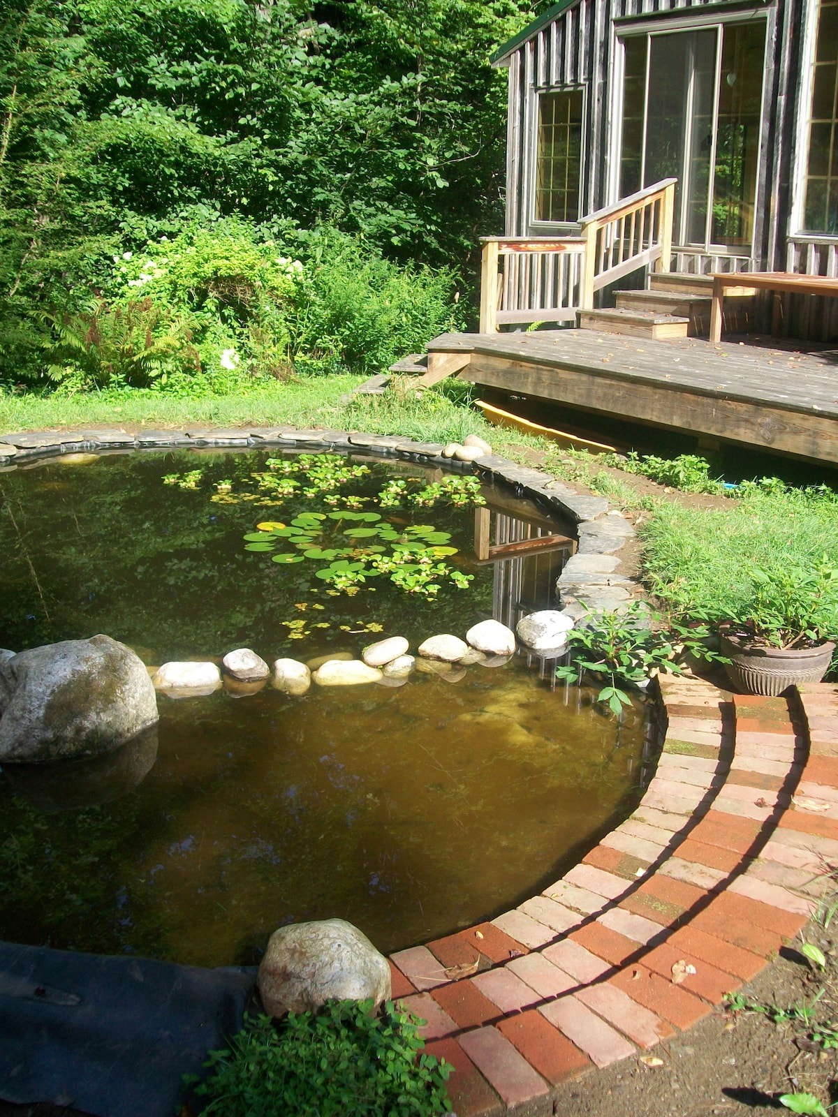 The pond and the deck leading to the guest room.