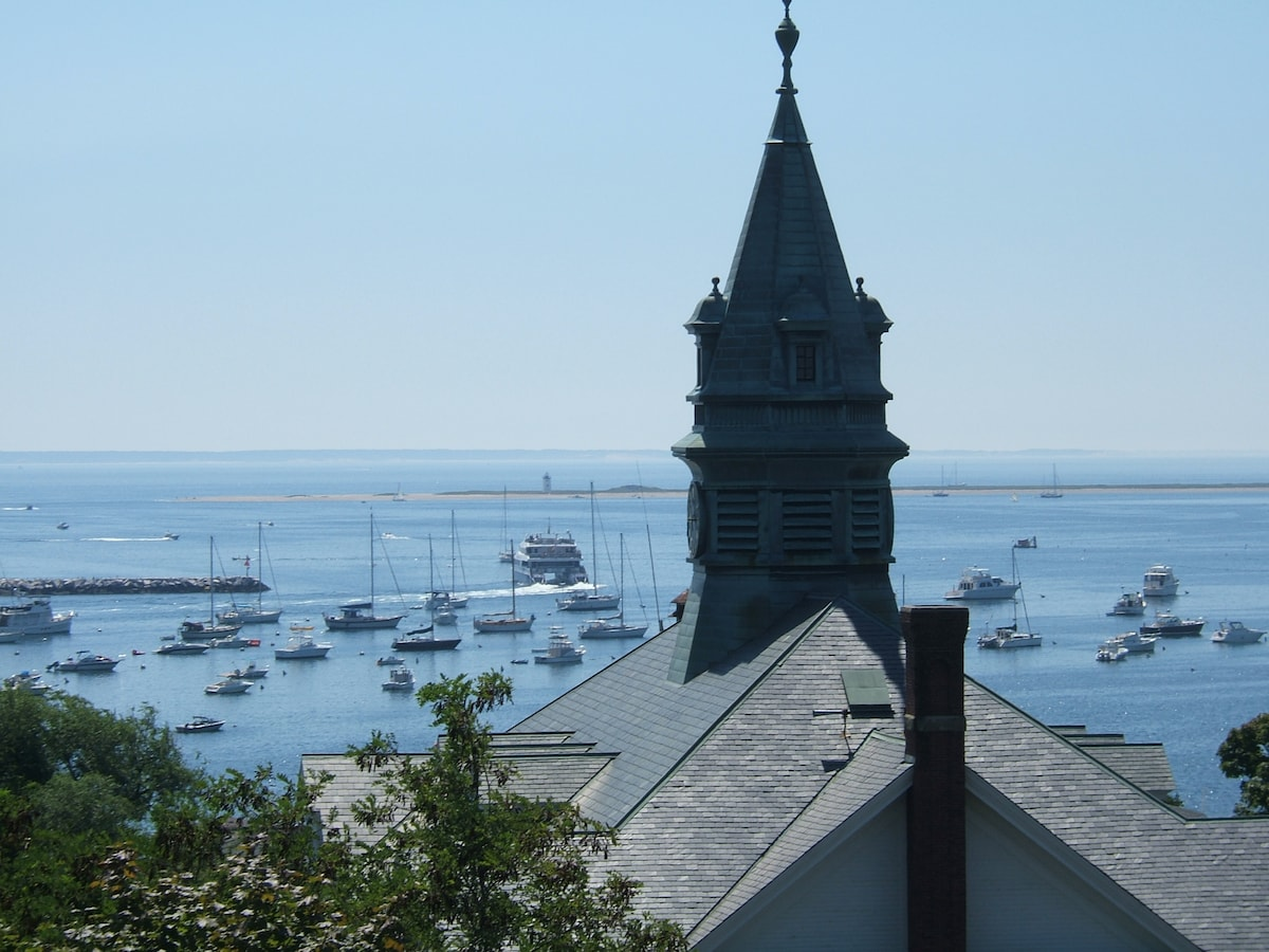 Provincetown Harbor under ten minute walk from my home.  Not a view from the house.