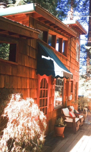 Redwood Treehouse Retreat