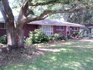 Front view of house with live oak