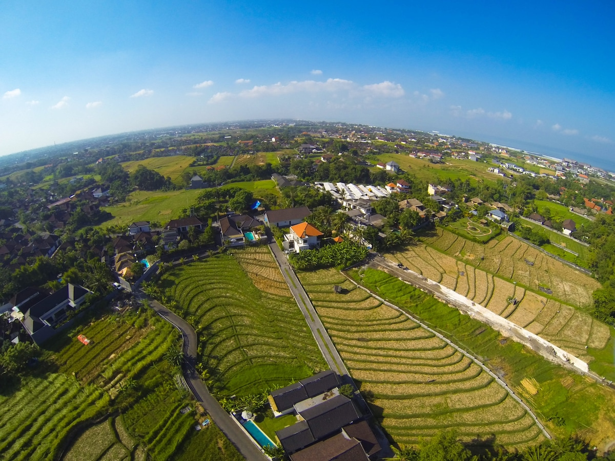 aerial view of the apartments canggu and rice fields area