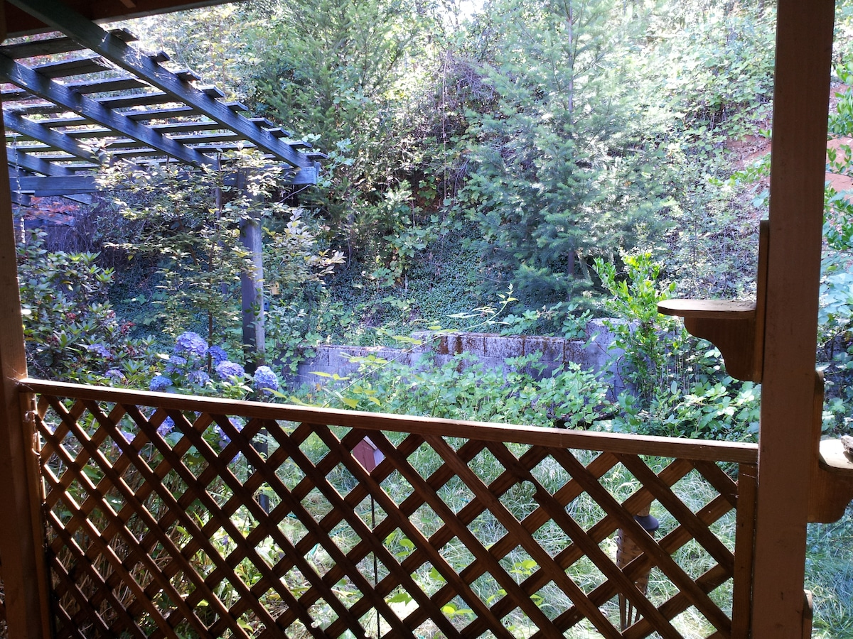 Hydrangeas off the library patio and the view from the secondary bedroom as well.  Hydrangeas attract deer, so please keep the gates closed!  They got ett last year, and we had none, but we are mostly good so far this year!
