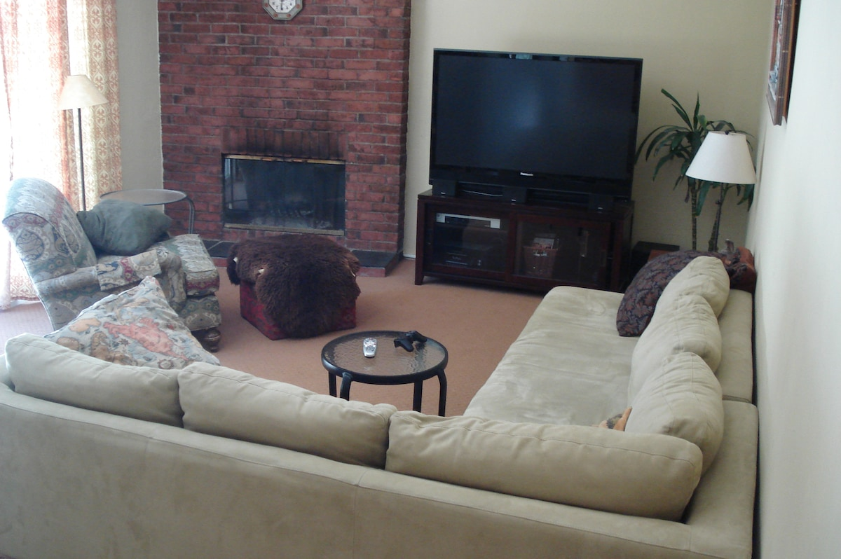 Comfortable Living Room with Big Screen TV