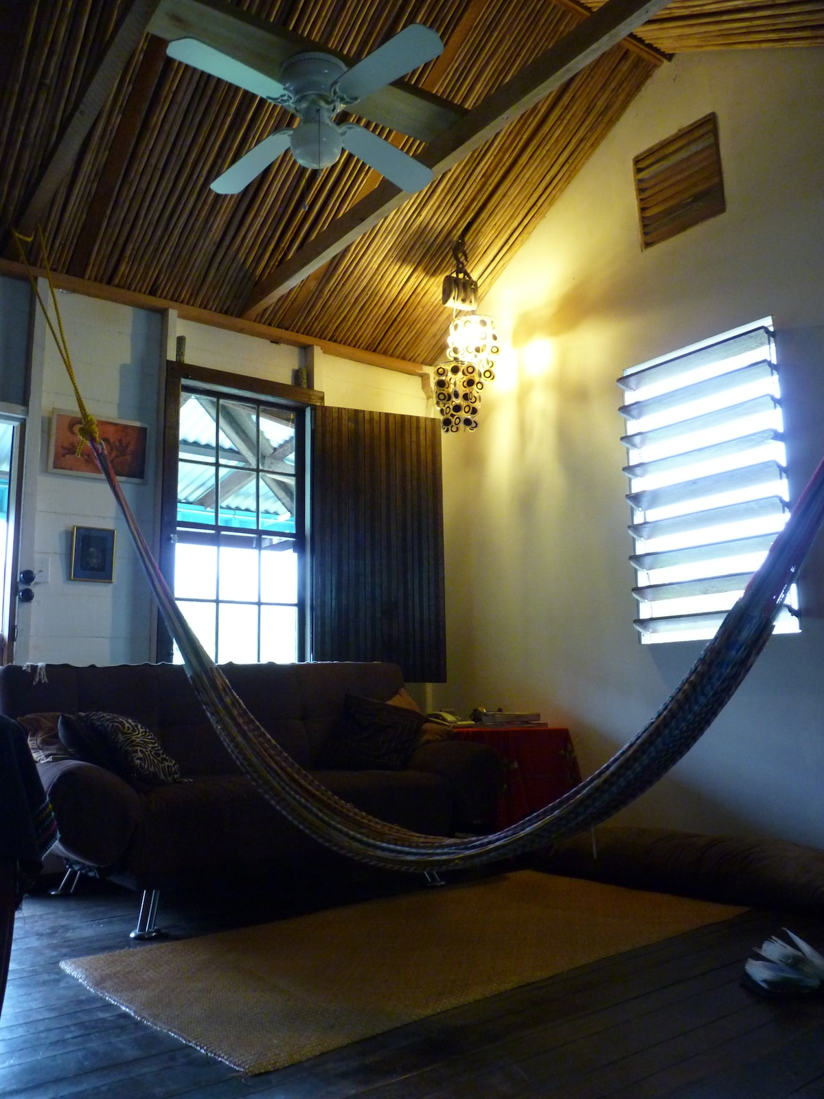 Open Plan living room sofa bed and Hammock.