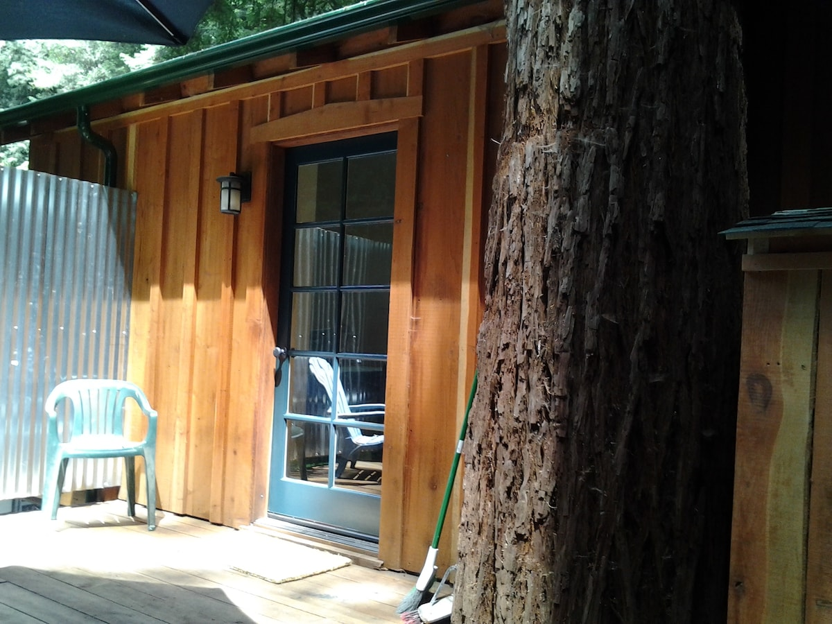The tree on the rear deck  anchoring the tree house.
