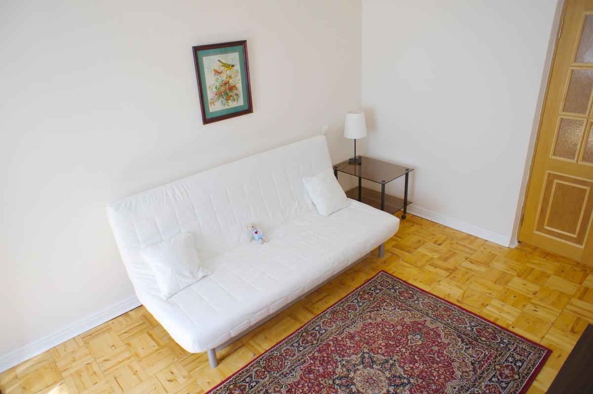 Жилая комната. Полноценный ортопедический матрас диван-кровати поможет отдохнкть после путешествия и выспаться во время пребывания.