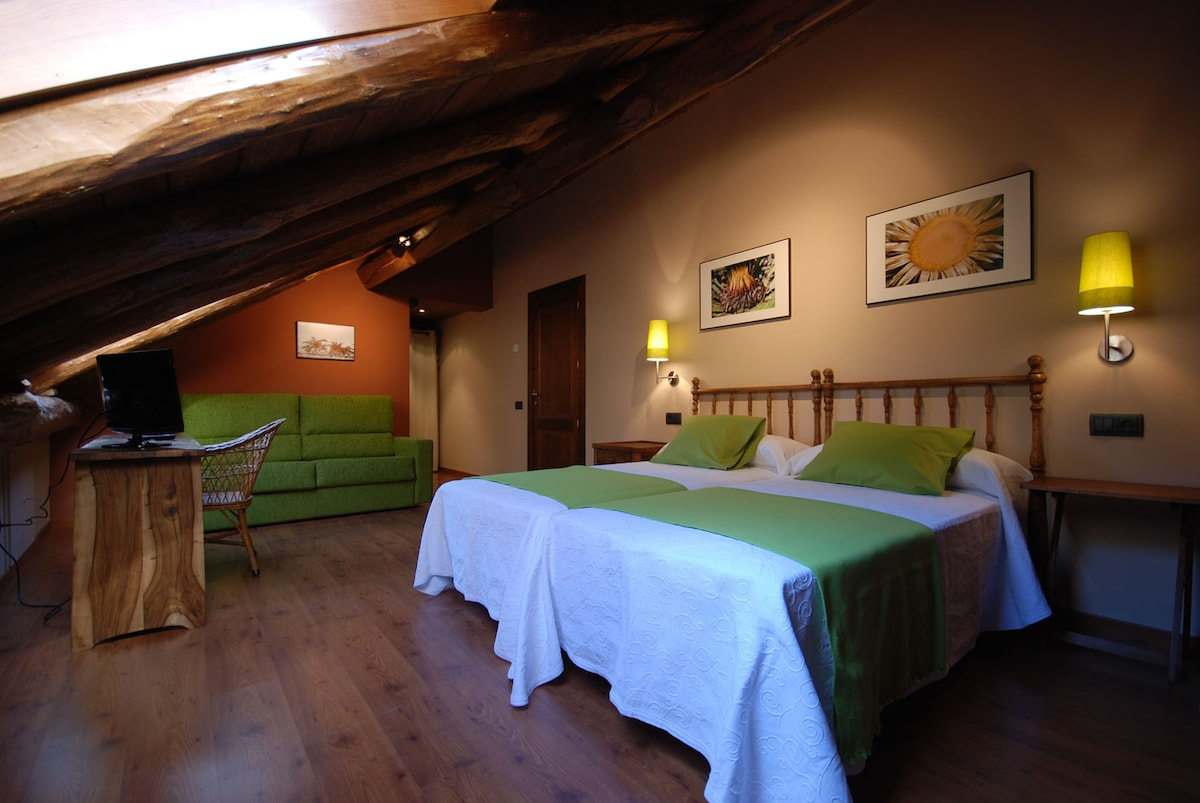 Nice and quiet room in the Pyrenees