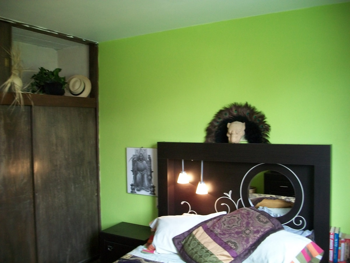 Another View of the Limon Room