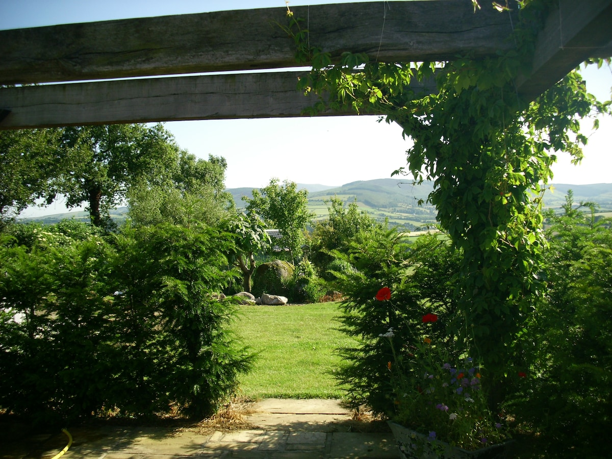 View through pergola to Blackstairs mountains