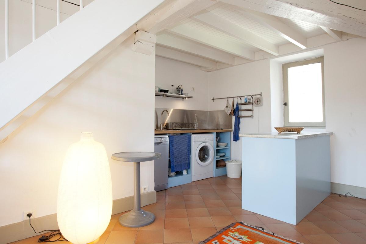 Appartement Arles Hôtel Particulier