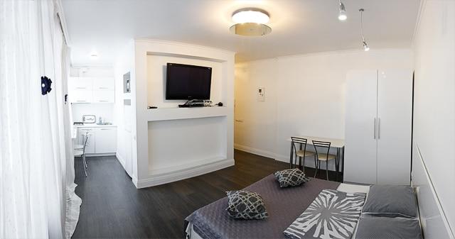 Studio apartments in the Pechersk