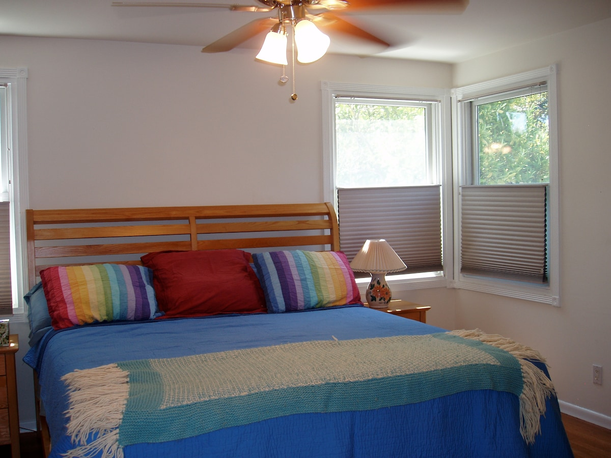 Bedroom with king size bed and ceiling fan