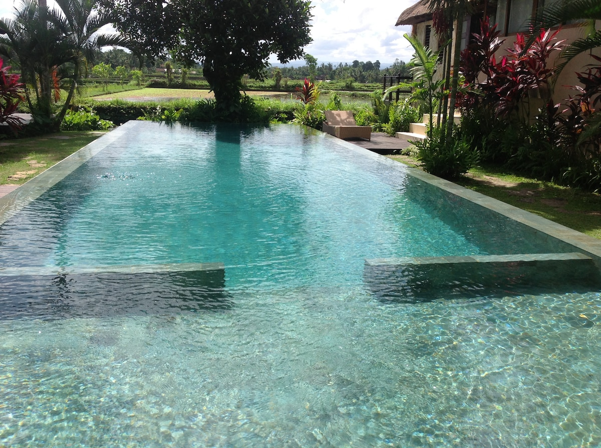 Astonishing Views Gunung Ubud Bali