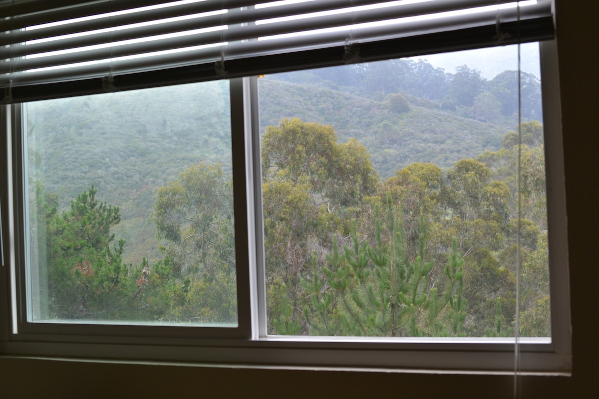 View of Park Trees and Mountain from Bed