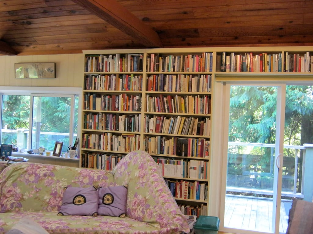 The living room with a vaulted ceiling, 3 skylights, 2 couches and lots of books.