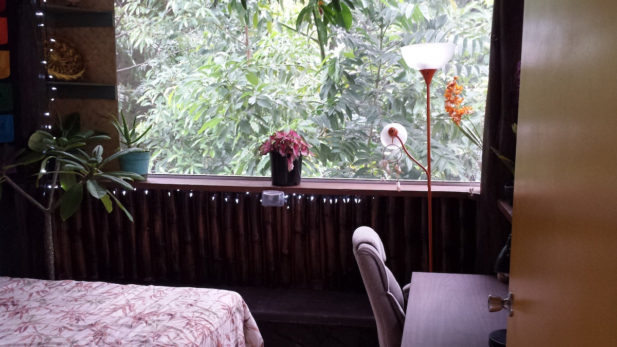 Just a partial view of your expansive picture window into the lush jungle below