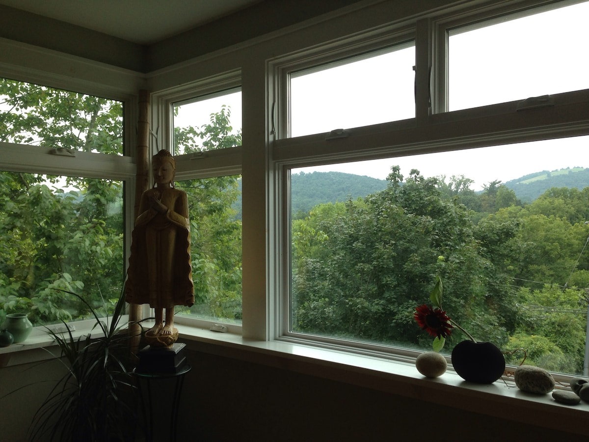 View of Mount Alto and Monticello Mountain from the second floor- kitchen/ living/ dinning room area.