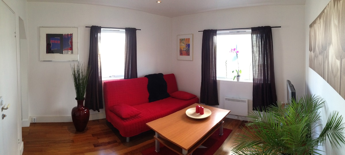 The apartment has a modern, Scandinavian style living room with kitchen corner, a cozy sofa-bed and TV