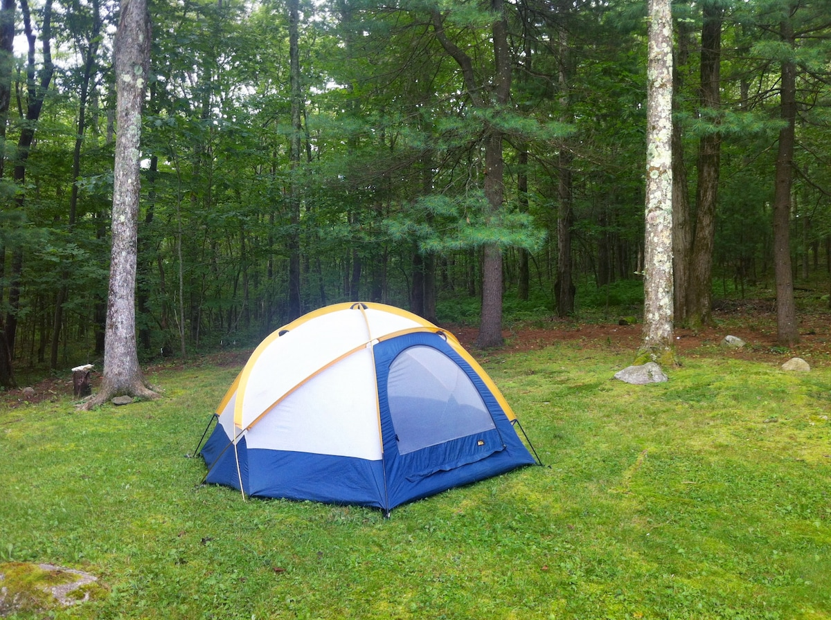 Available 3 person geodesic tent, with rain fly