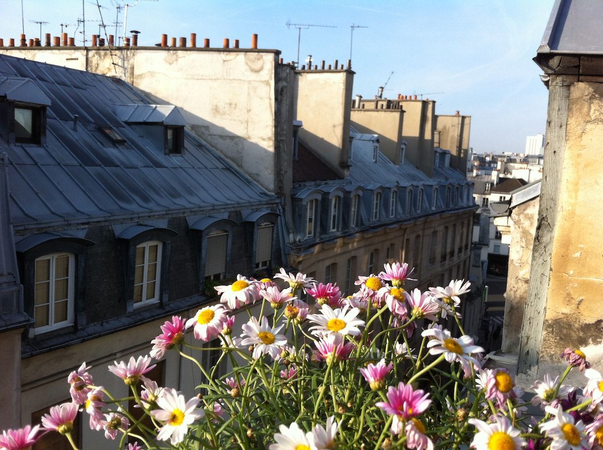 view over the roofs of Paris
