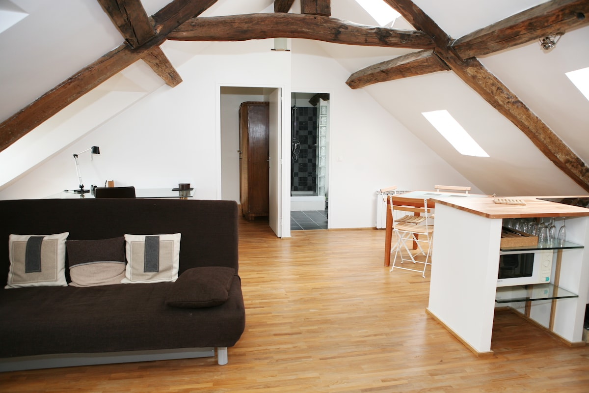 Very bright apartment with high ceiling in the middle.      Special discount of 20% discount to a limited number of guests! Request a discount at: sebastienparis11@óutlóok.cóm, just type the address manual without any dots.