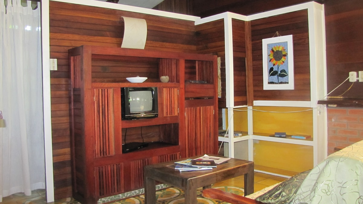 Living room with television and DVD player.