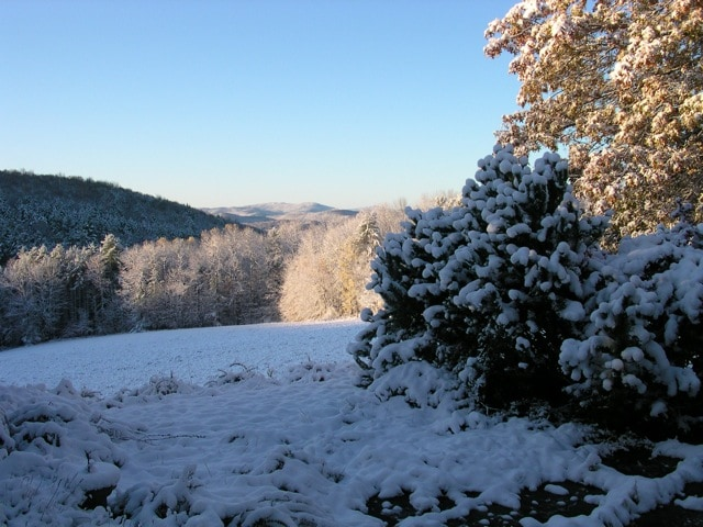 View from the terrace in early winter