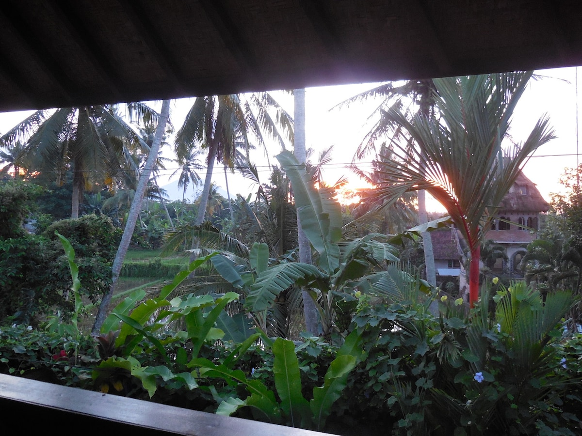 View from balcony - Sunrise over the ricefields