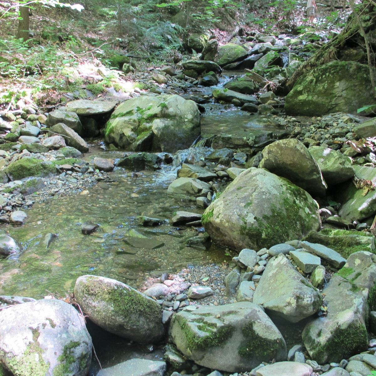 Schoolhouse Brook.Listen to the sound of the babbling brook through the windows.