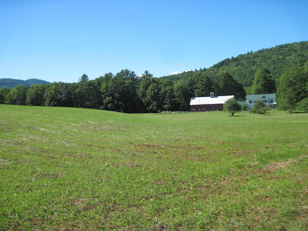 pastoral Vermont view