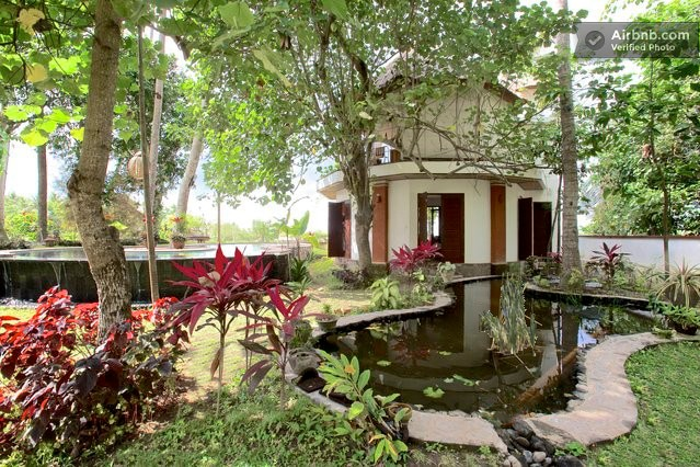 In the shade of coconut and hibiscus trees lies our fish and plant pond and fountain
