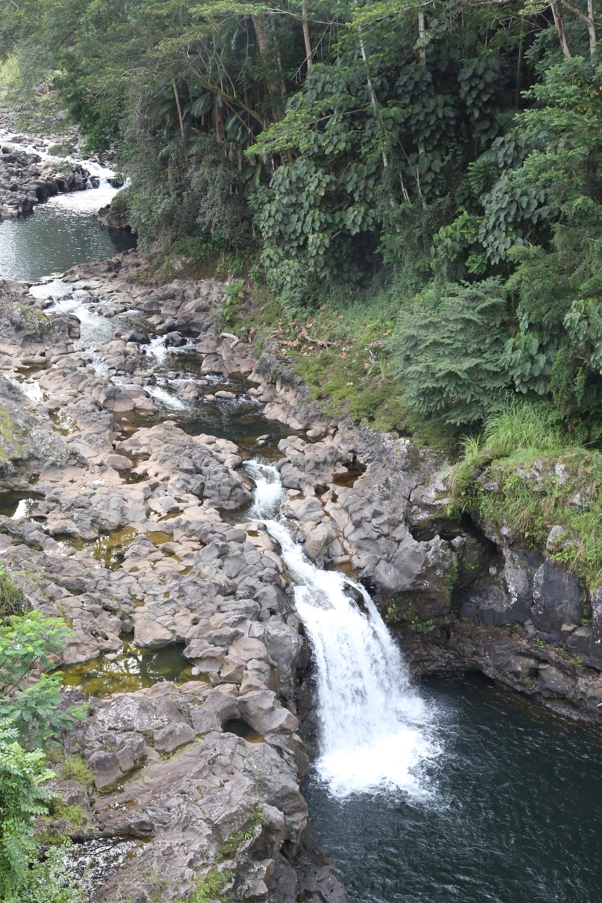 Gorgeous view outside of patio of the Wailuku River and falls