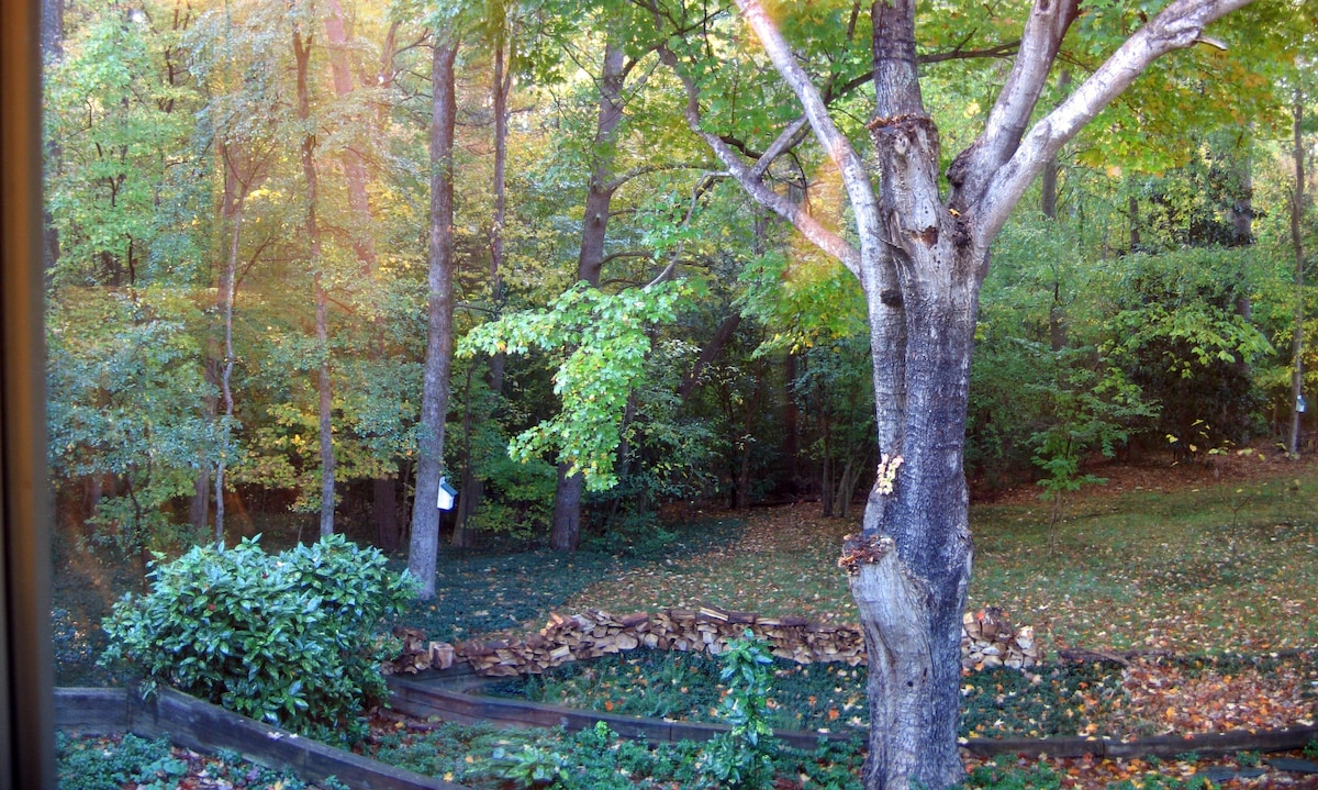 View from your Bedroom Windows - early Fall