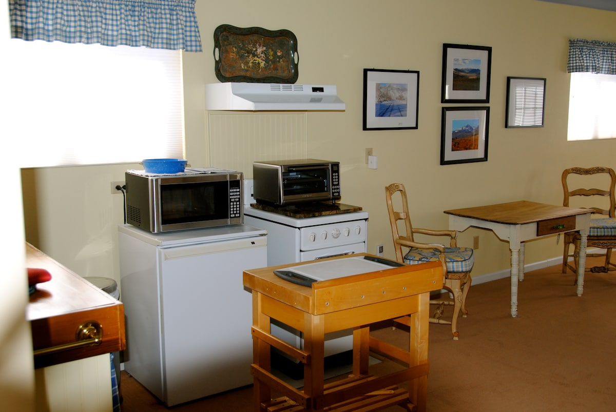 Small fridge, new microwave and toaster/convection oven for light meal preparation.