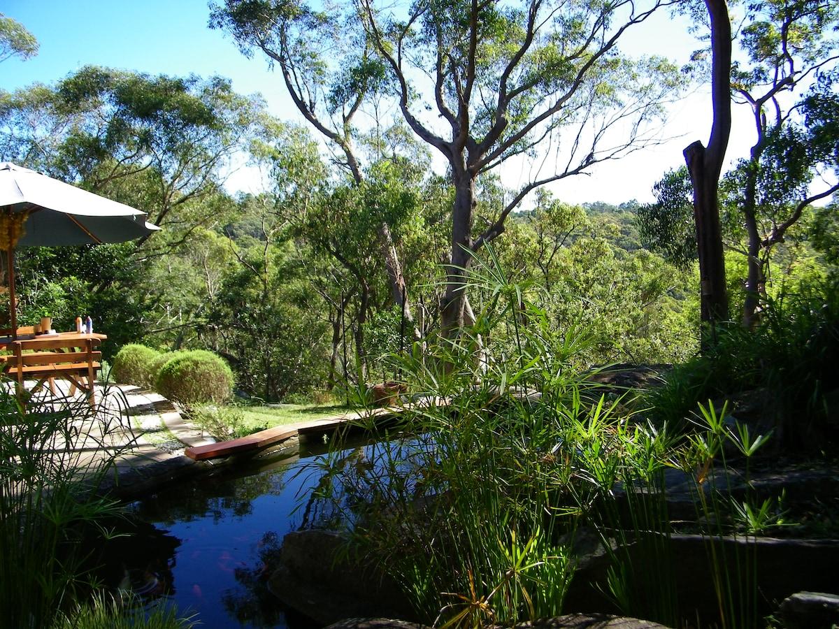 On the edge of Bushland in Sydney