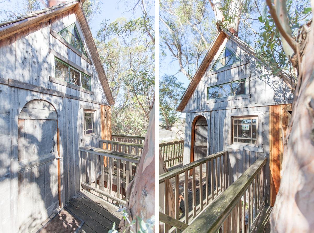 Tree House at Swallowtail Studios