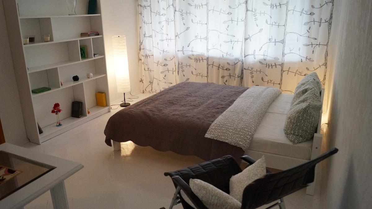 Bright cozy apartment in the center