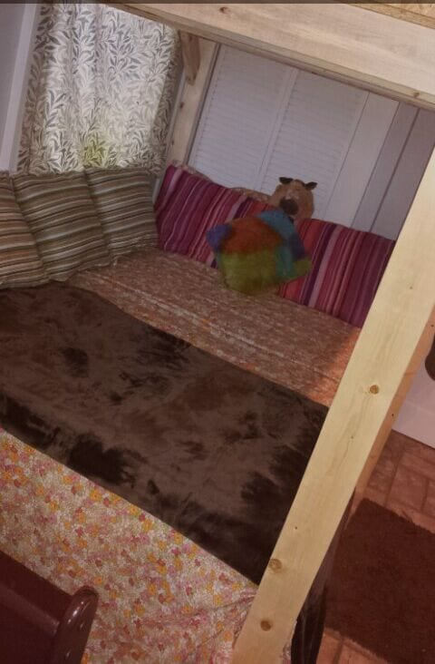 plush, cozy, chocolatey, furry blanket; (not real mink). (: