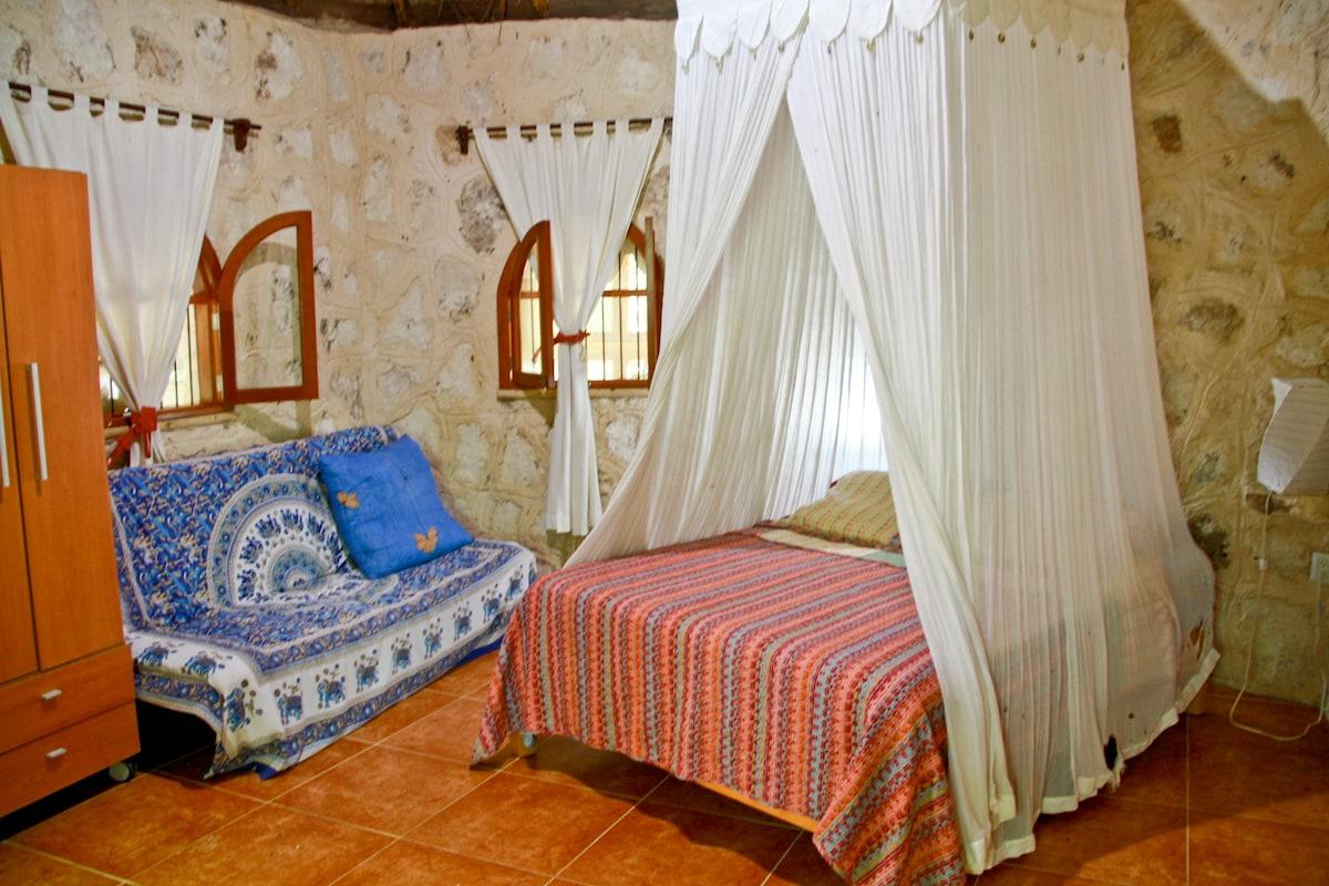 Shakti house