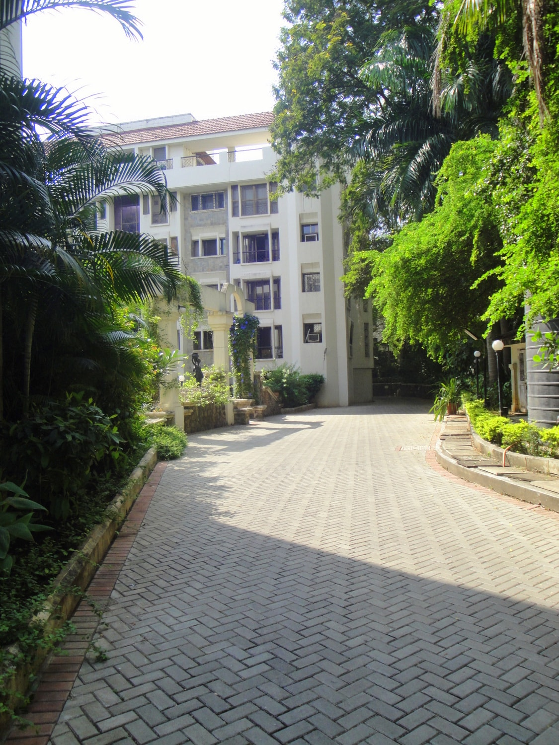 Path in the society