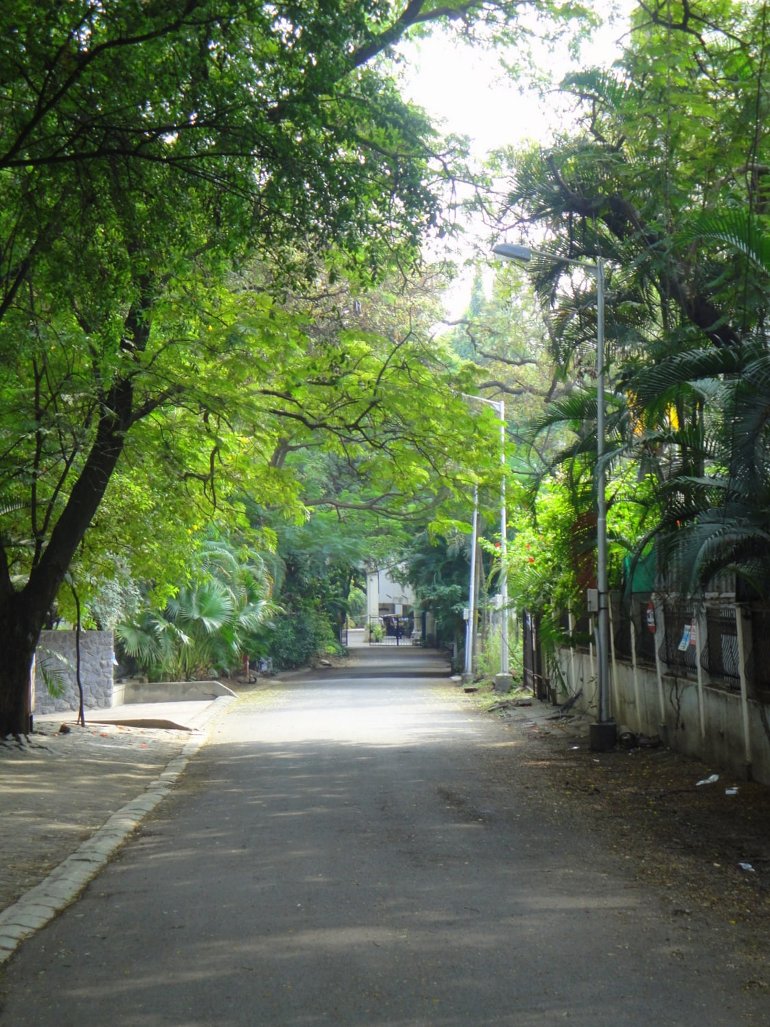 Road leading to the apartment which is at the end.