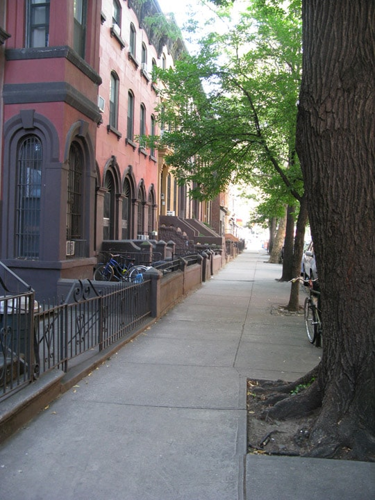 Historic Brownstone Buildings