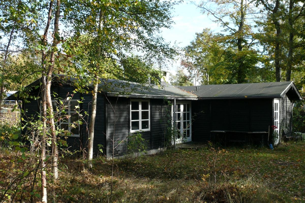 Romantic wood cabin near Aarhus