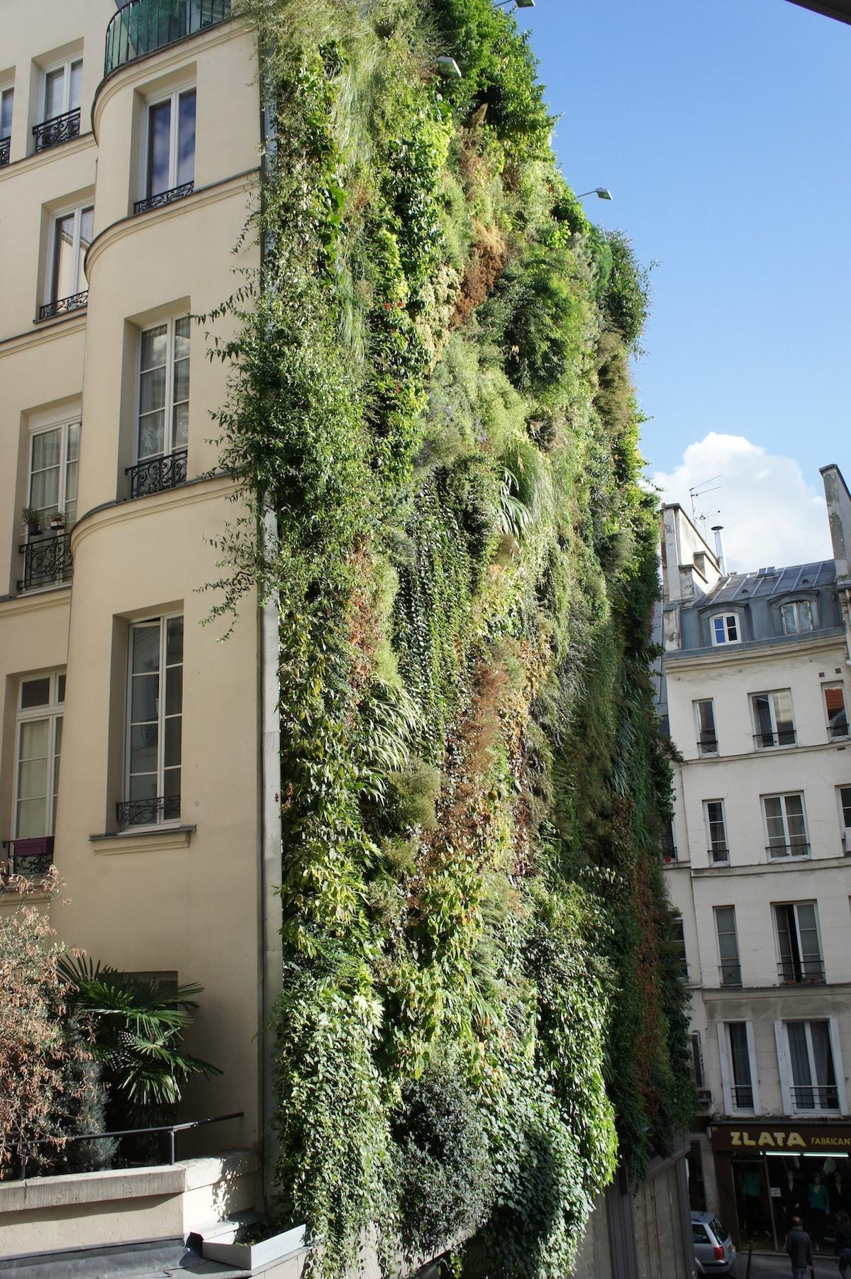 Appartement Terrasse PARIS CENTRE