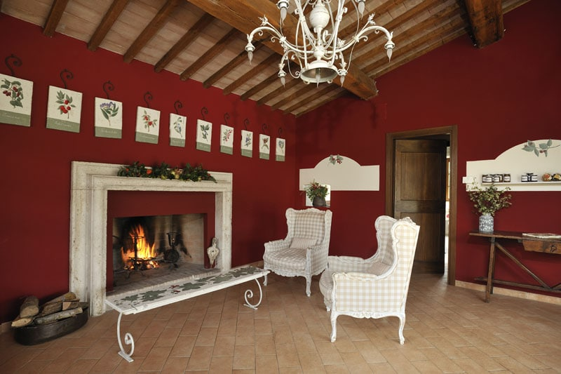 Saletta comune con camino/ Shared living room with chimney