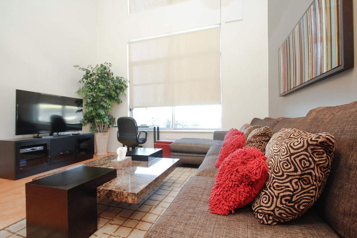Large Condo, Santana Row, San Jose