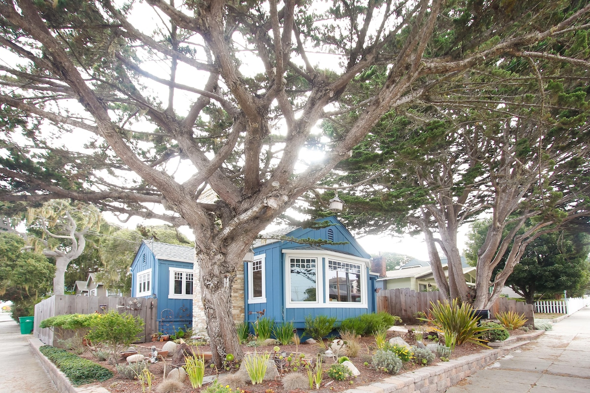 Blue House, Walk to Town and Beach!