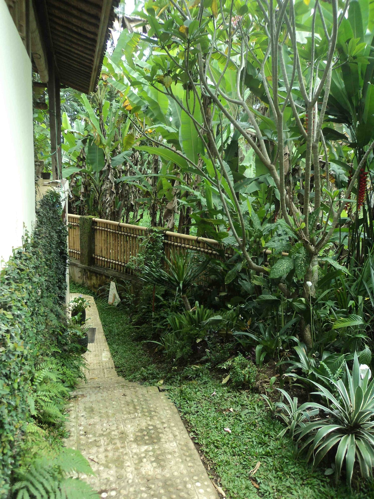 Private steps down to your garden and entrance.