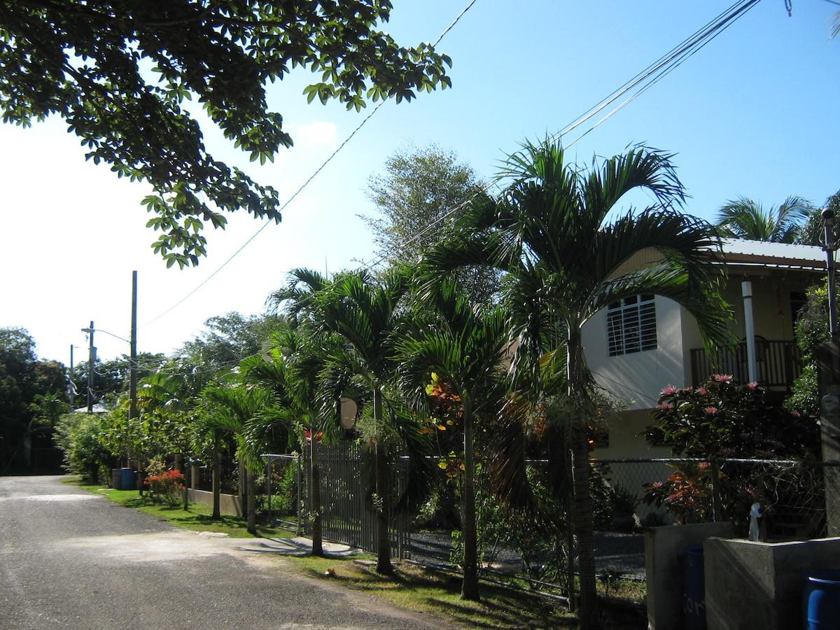street scene, beach around the corner