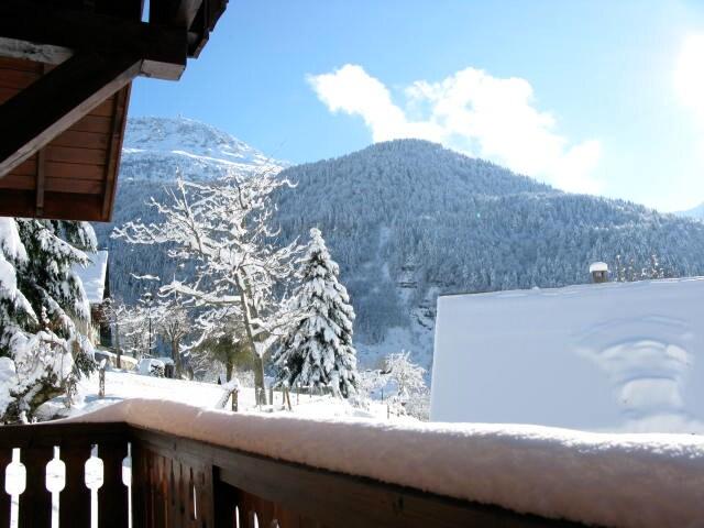 Fresh powder snow - typical for Vaujany!